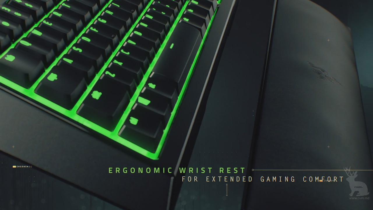 keyboardrazer2